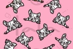 Pink bull
